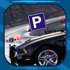 PoliceCarParking2016