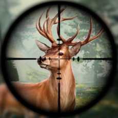 狙击手3D-鹿生存游戏