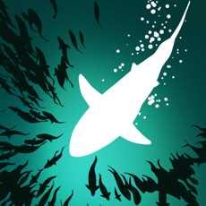 深海鱼群.